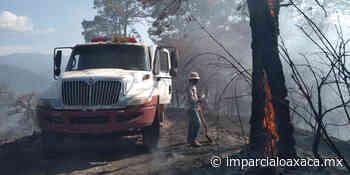 Sofocan incendio en San Miguel y La Purísima - El Imparcial de Oaxaca