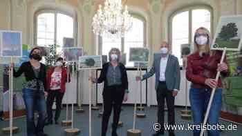 Lieblingsbäume von Kemptenern und mehr – eine Ausstellung in der Stadtbibliothek - Kreisbote