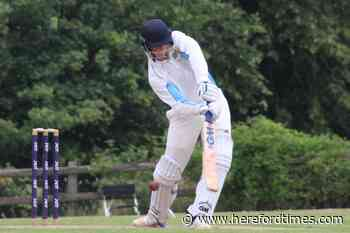 Herefordshire sports fixtures - Hereford Times