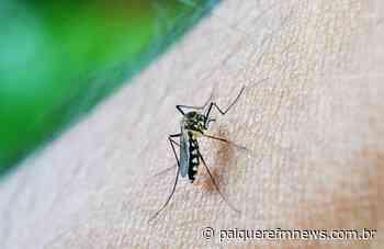 Secretaria de Saúde confirma nova morte por dengue em Londrina - Paiquerê FM News
