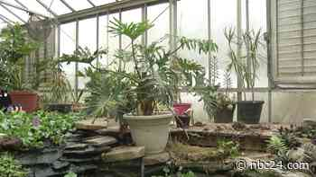 Aerospace & Natural Science Academy of Toledo hosting plant sale with animals, tours - WNWO NBC 24