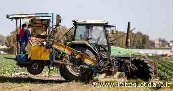 Cagliari, 16enne morto schiacciato da trattore: era salito di nascosto sul mezzo agricolo - Il Fatto Quotidiano