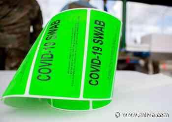 Michigan reports 2,758 new coronavirus cases, 30 new deaths Friday, May 7 - MLive.com