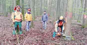 Auftakt für Waldkindergarten in Parsberg - Mittelbayerische