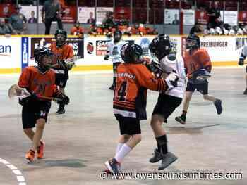 North Stars minor box lacrosse program shifts to Shallow Lake - Owen Sound Sun Times