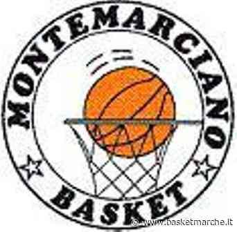 L'Upr Montemarciano verso l'esordio contro Recanati. Le parole di coach Alessandro Rinolfi - Serie C Silver Coppa Centenario Girone A - Basketmarche.it