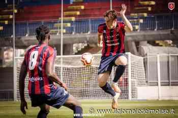 Calcio, Serie D, Campobasso pronto per la trasferta di Recanati. Accolta con favore la sconfitta del Notaresco - Il Giornale del Molise
