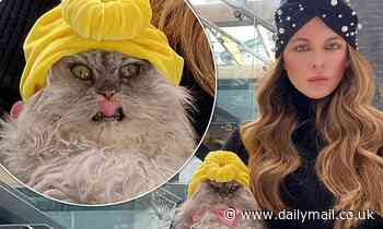 Kate Beckinsale shows her playful side after posing with her cat as both wear similar head scarves - Daily Mail