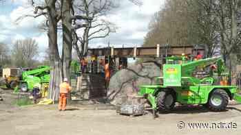 Riesenfindling in Altentreptow geborgen - NDR.de