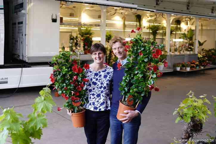 """Ann (54) en Guy (53) nemen na 35 jaar afscheid van de Gentse bloemenmarkt: """"Hard om je levenswerk voortijdig te moeten stopzetten"""""""
