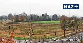 Darum wird zunächst ein provisorischer Bolzplatz in Wustermark angelegt - Märkische Allgemeine Zeitung