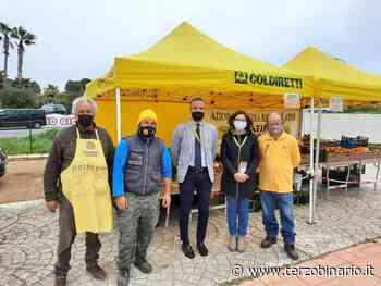 Ladispoli, Comune al fianco degli imprenditori agricoli - Terzo Binario News - TerzoBinario.it