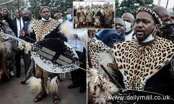 New King of the Zulus is whisked away from his public unveiling in chaotic scenes in South Africa