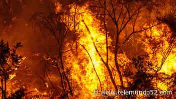 Accidente automovilístico cerca de San Jacinto provoca incendio de más de 200 acres - Telemundo 52