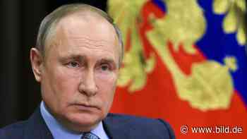 Putins Volk schrumpft - Russen sterben, wie seit 70 Jahren nicht! - BILD