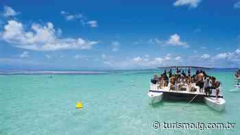5 motivos para visitar Maragogi, em Alagoas - iG