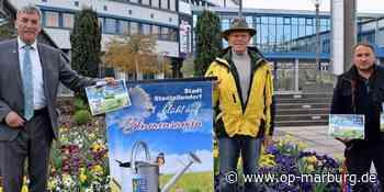 Hilfe für die Bienen - Stadtallendorf blüht wieder auf - Oberhessische Presse