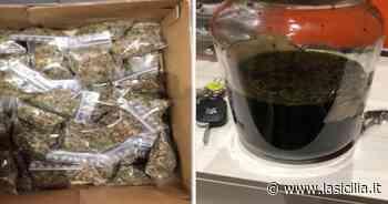 Catania, polizia sequestra 1,2 kg di cocaina e 800 gr di marijuana - La Sicilia