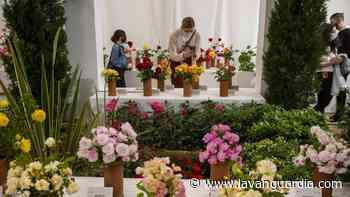 Sant Feliu de Llobregat recupera la Exposición Nacional de Rosas - La Vanguardia