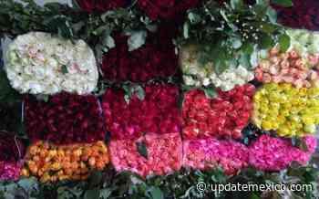 Aumenta en 60% venta de rosas en Querétaro, previo al Día de las Madres - Update México