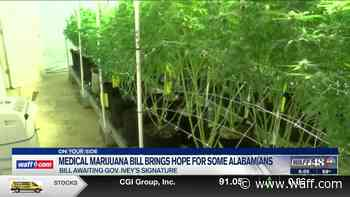 Medical marijuana bill offers hope for some Alabamians - WAFF