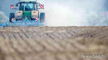 Gemeinschaftsschuppenanlage in Eningen: Neun Schuppen für Nebenerwerbs- und Hobbylandwirte – Das Interesse ist groß - SWP