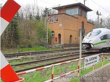 Linie solle über Brakel nach Höxter führen – Bahnhaltepunkt in Bonenburg bleibt Thema: Warburger Rat fordert Schnellbus - Warburg - Westfalen-Blatt