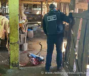 Operação em Cruz Alta combate abigeato e crime contra relação de consumo - Rádio Progresso de Ijuí