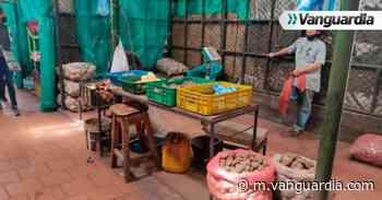 Papa y azúcar, los alimentos que escasean en San Gil - Vanguardia