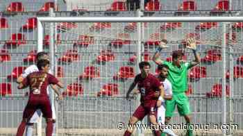 Preview - Serie D/H, 29^giornata: Taranto-Portici un (quasi) testacoda, il Casarano riceve il Lavello. Spicca Nardò-Andria - TuttoCalcioPuglia.com