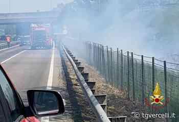 Bruciano sterpaglie sulla provinciale 11 a Borgo Vercelli: fumo in strada - tgvercelli.it