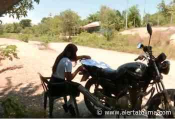 Niños estudian en las trochas de Coyaima para evitar el Covid- 19 - Alerta Tolima