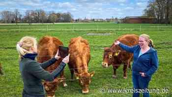 Stratmann führt Schüler per Videostream über Bauernhof in Drebber - kreiszeitung.de