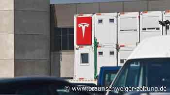 Umwelt: Naturschutzbund hat Bedenken gegen Teslas Batterie-Pläne
