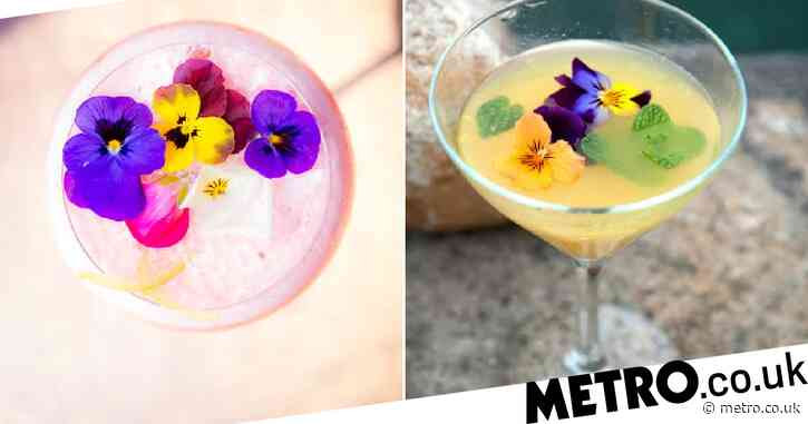M&S is now selling edible flowers to spruce up your summer cocktails and food
