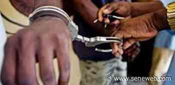Saint-Louis : Pour le vol d'une tablette, le tailleur Ousmane Ndiaye écope de 6 mois ferme - Seneweb