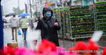 Coronavirus infection rates, cases and deaths for all parts of Wales on Sunday, May 9 - WalesOnline