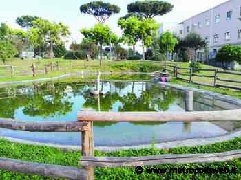 Torre del Greco, villa comunale nel degrado: stagno d'acqua putrida e servizi igienici a pezzi - Metropolis
