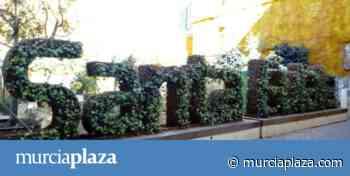 Los dueños del solar del huerto urbano de Santa Eulalia requieren el terreno y desmontarlo costará 10.000 euros - Murcia Plaza