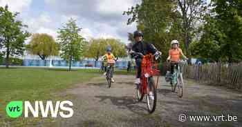 400 kinderen uit lagere scholen in Antwerpen werken in teams volledige Ironman af - VRT NWS