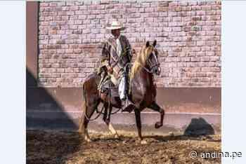 Conocimientos del chalán para crianza del Caballo de Paso es Patrimonio Cultural - Agencia Andina