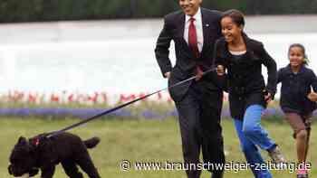 """""""First Dog"""": Die Obamas trauern um Familienhund Bo"""