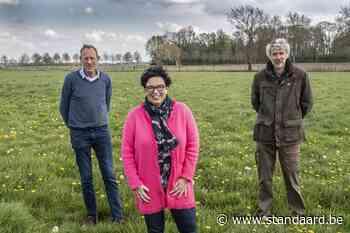 Bosje op grens van Moorslede met Roeselare - De Standaard
