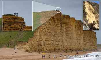 Height of stupidity! Idiots pose for a photo at top of 150ft Dorset cliffs