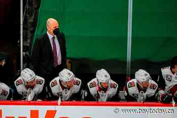 Tocchet won't return as coach of Coyotes after 4 seasons