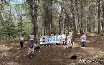 Ambiente: da Sciacca a Vittoria flash mob contro gli incendi dolosi - Sky Tg24