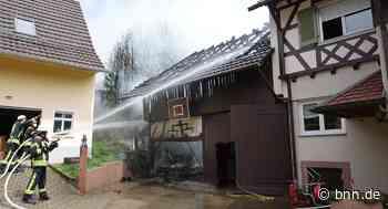 Scheunenbrand in Offenburg-Rammersweier: Hund verhindert Brandkatastrophe - BNN - Badische Neueste Nachrichten