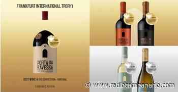 Redondo:Vinhos Porta da Ravessa distinguidos no Frankfurt International Trophy de 2021 - Rádio Campanário - Rádio Campanário