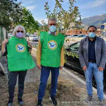 Castrovillari per il verde pubblico - Cosenza Channel