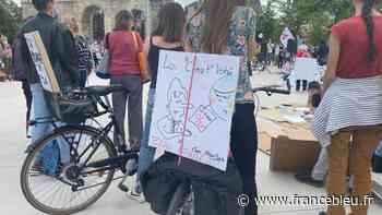 """EN IMAGES - 400 personnes marchent à Reims contre un projet de loi climat """"trop faiblard"""" - France Bleu"""